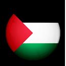 Palestine's Flag